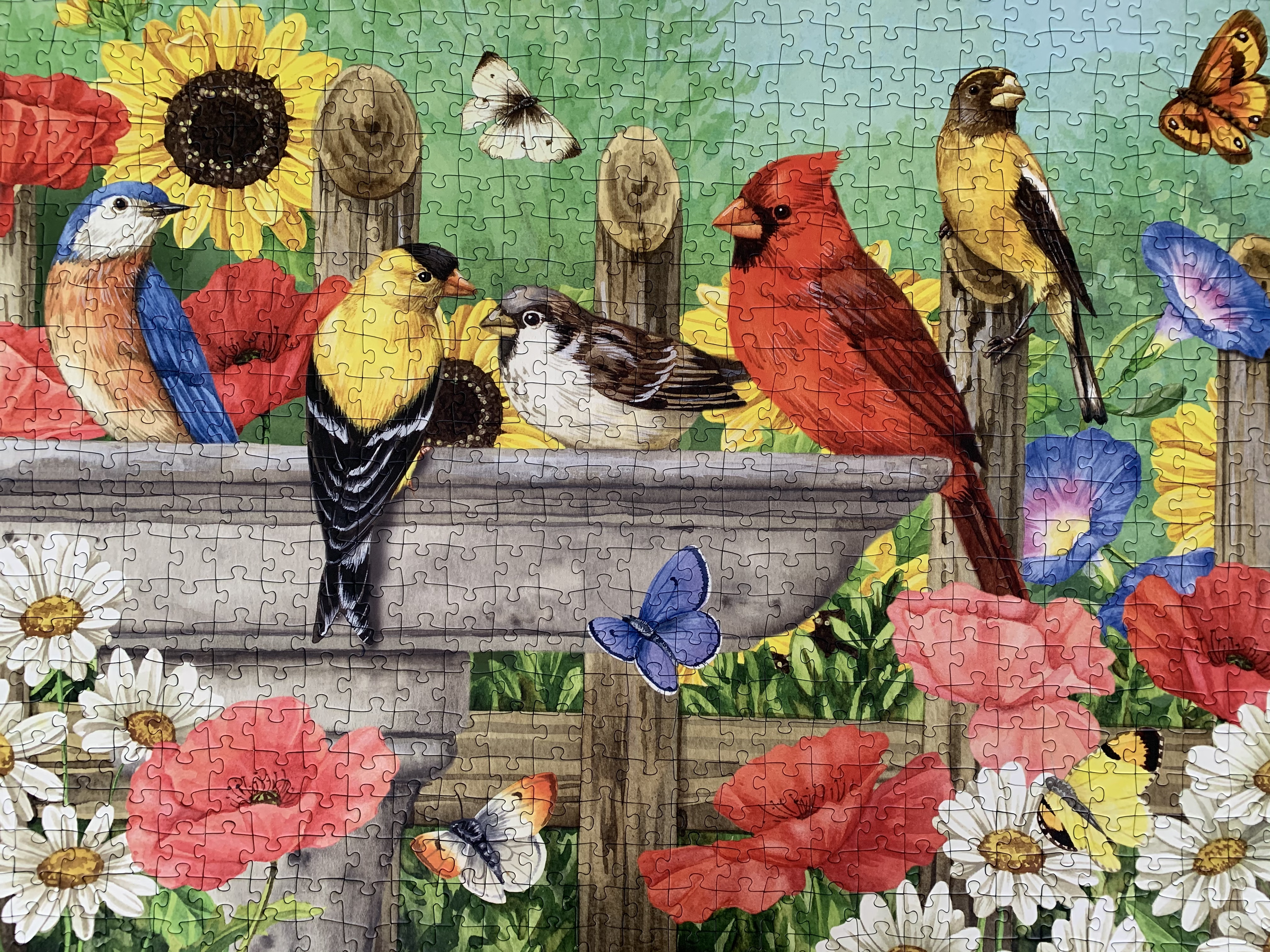 Some of our jigsaw puzzles